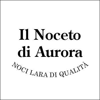 Logo il Noceto di Aurora