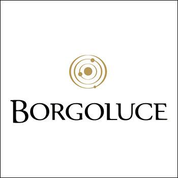Logo Borgoluce