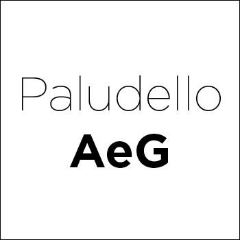 Logo Paludello