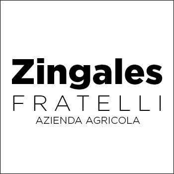 Logo Zingales